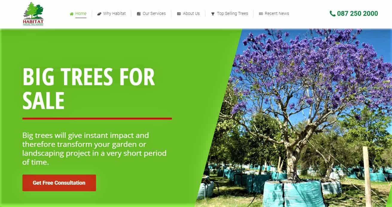 habitat-mature-tree-nursery-western-cape